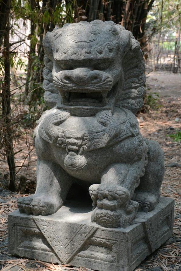 León de Fu grande.