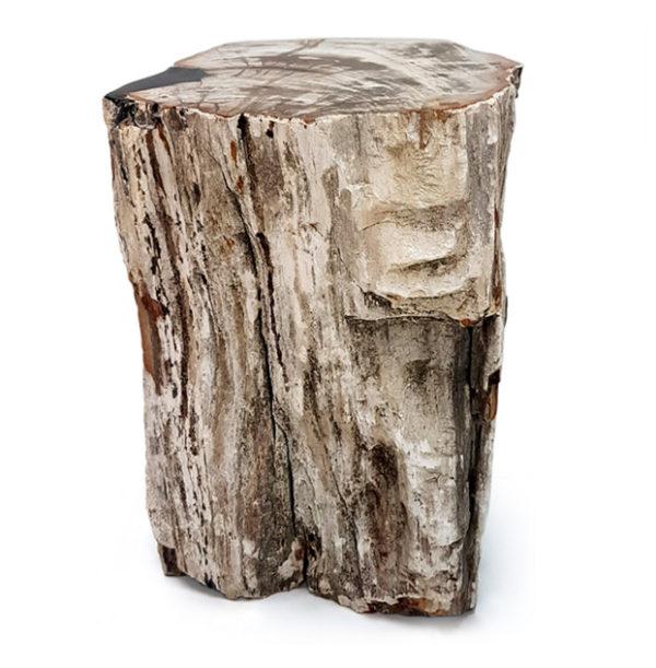 Taburete de madera petrificada-xilópalo