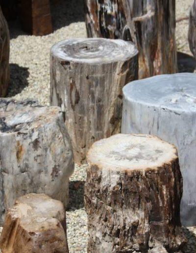 Taburetes y mesitas de madera fosilizada.